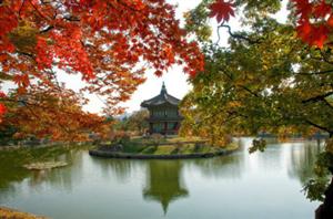 Ngắm mùa lá đỏ ở Hàn Quốc đầy lãng mạn